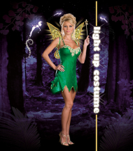 Pixie Lust Adult Costume