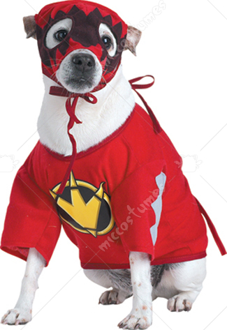 Power Ranger T Rex Pet Costume