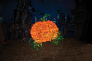 Pumpkin Coach Light Up