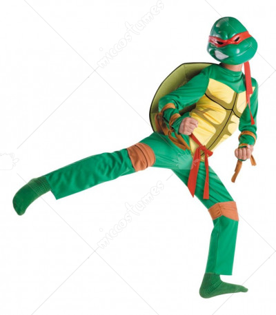 Raphael Classic Child Costume