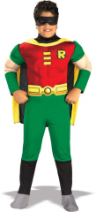 Robin Child Deluxe Costume