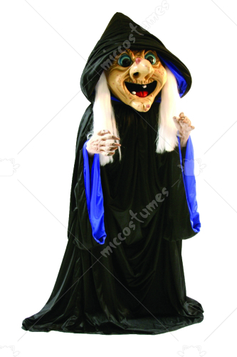 Rosie Witch Adult Costume