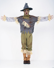 Scarecrow Men Adult Costume