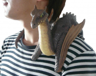 Shoulder Dragon Baby