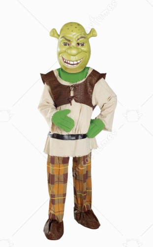 Shrek Deluxe Child Costume