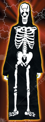 Skeleton Robe Adult Costume