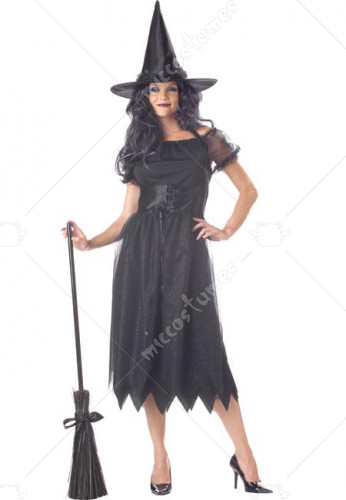 Sparkle Witch Adult Costume