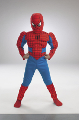 Spider-Man Comic Muscle Figure Child Costume