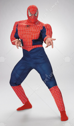 Spider Man Muscle Teen Costume