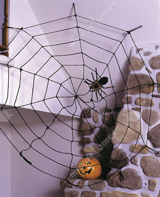 Spider Web 9Ft Rope