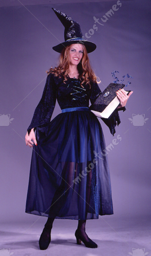 Storybook Witch Velvet Adult Costume