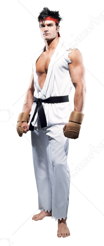 Street Fighter Ryu Large Adult Costume