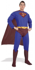 Superman Muscle Adult Costume