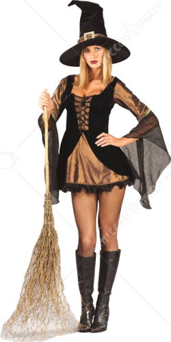 Wizard of Oz Sweet Sexy Witch Adult Costume