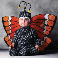 Tom Arma Butterfly Costume