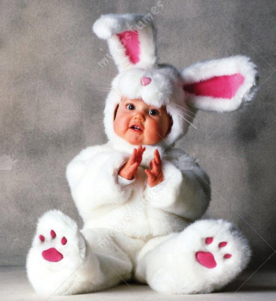 Tom Arma Rabbit Costume