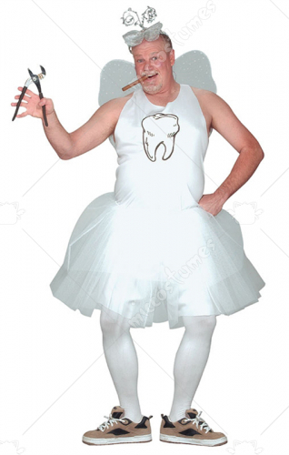 Tooth Fairy Adult Costume