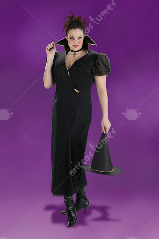 Transylvania Witch Plus Size Costume