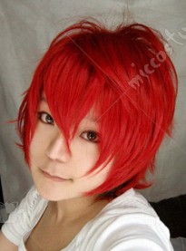 Vocaloid Red Hot Chili Peppers Kaito Cosplay Wig