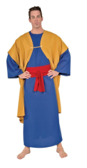 Wiseman II Adult Costume