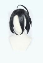 Pokemon Sword and Shield Allister Onion Short Grey Black Cosplay Wig