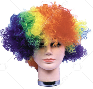Curly Clown Budget Wig