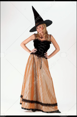 Witch Elegant Gold Costume