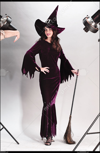 Witch Elegant Plum Costume