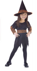 Witch Pumpkin Patch Toddler Costume