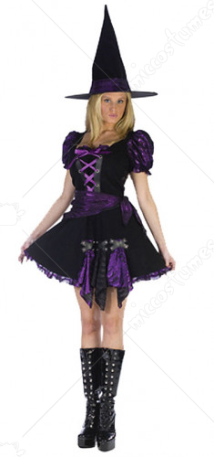 Witch Purple Punk Adult Plus Costume