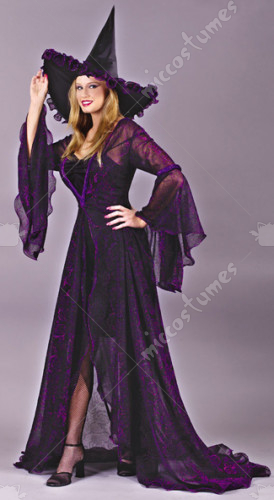 Witch Shimmering Rose Costume