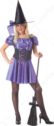 Witch Storybook Adult Costume