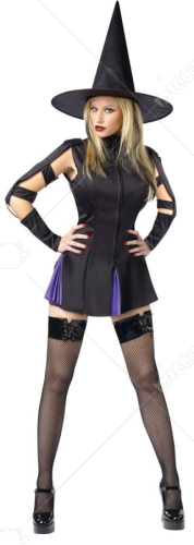 Witch Wicked Adult Costume