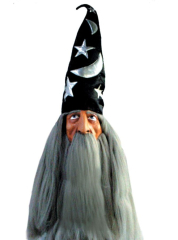 Wizard Mask Hat And Hair Grey
