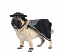 Zorro Pet Costume