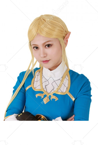 The Legend Of Zelda Breath Of The Wild Princess Zelda Cosplay Wig