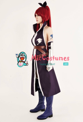 Fairy Tail Erza Scarlet Purple Cosplay Costume