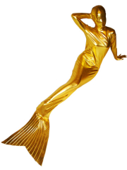 Gold Shiny Metallic Mermaid Suit