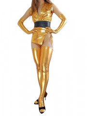 Gold Shiny Metallic Sexy Costume