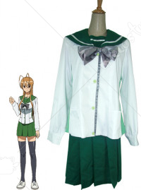 Highschool of the Dead Fujimi Shobo High School Women Costume