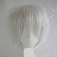 Axis Powers Hetalia Prussia Gilbert Beilschmidt Cosplay Wig