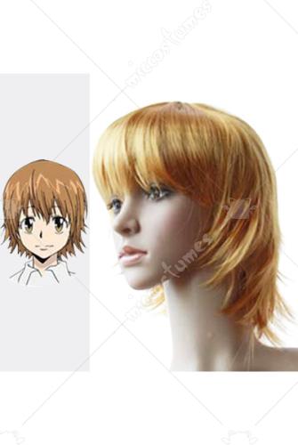 Katekyo Hitman Reborn Kyoko Sasagawa Cosplay Wig For Sale