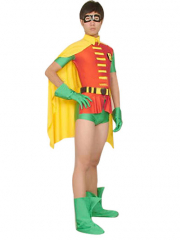 Robin Lycra Super Hero Costume