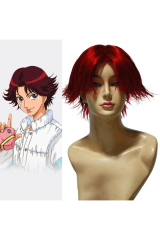 The Prince Of Tennis Kikumaru Eiji Cosplay Wig