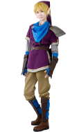 Zelda Hyrule Warriors Link Purple Cosplay Costumes