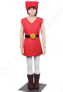 The Legend of Zelda Four Swords Link Red Cosplay Costume